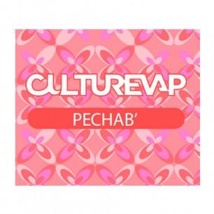 PECHAB - CULTUREVAP